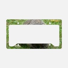 GrdHg4.58x2.91 License Plate Holder