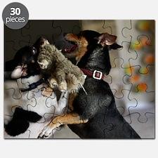 Playful Rat Terrier Dogs Puzzle