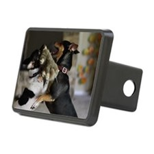 Playful Rat Terrier Dogs Hitch Cover