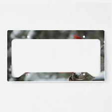 CdWntrMag License Plate Holder