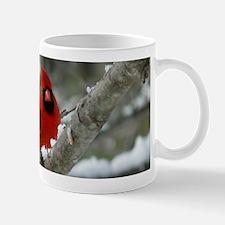 CdWntr14x6 Mug