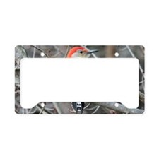 RB4.58x2.91SF License Plate Holder