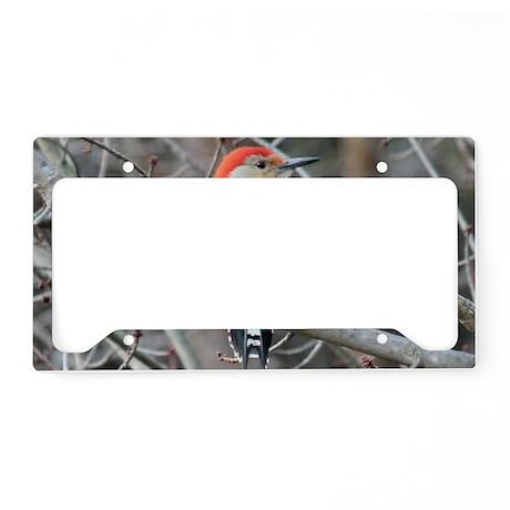 RB4.58x2.91SF License Plate Holder