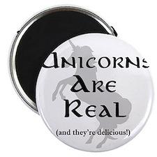 unicorns Magnet