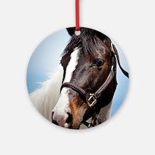 Horse Round Ornament