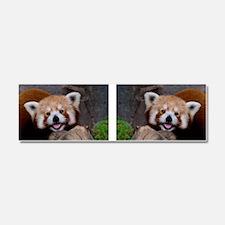 Red Panda for Mug Car Magnet 10 x 3