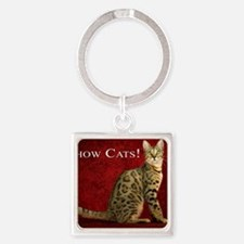 Show Cats Cover Square Keychain