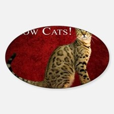 Show Cats Cover Decal