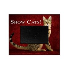 Show Cats Cover Picture Frame