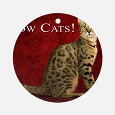 Show Cats Cover Round Ornament