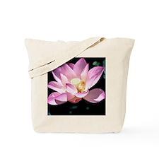 Lotus in bloom copy Tote Bag