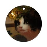 Cats Round Ornaments