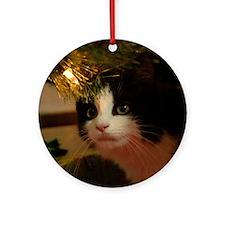 pet-nc20 Round Ornament
