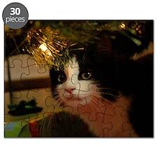pet-nc20 Puzzle