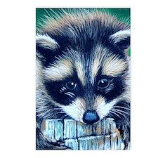 racoon Postcards (Package of 8)