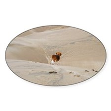 Beagle in Dunes Decal