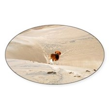 Dune Beagle Decal