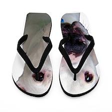 Raiden Flip Flops