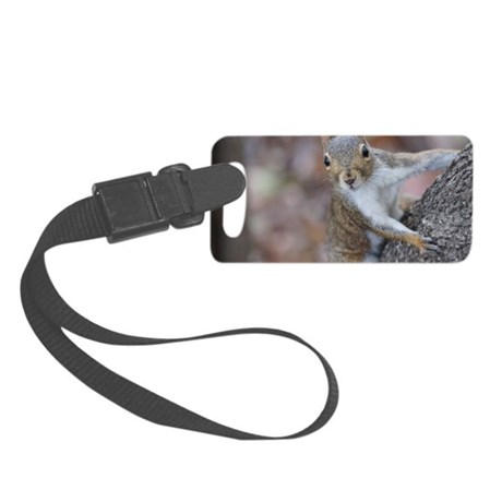 Juvenile Squirrel Up Aree Small Luggage Tag