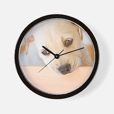 LabPuppy Wall Clock