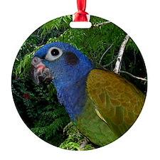 1pionuscalendar Ornament