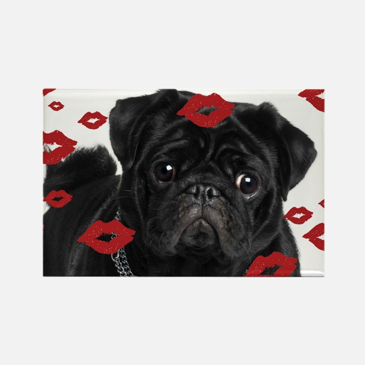 Pugs and Kisses 5x7 Rectangle Magnet