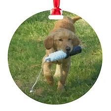puppy bumper 60 Ornament
