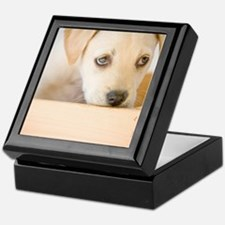 LabPuppy Keepsake Box