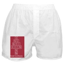 PostCard_Red_FRONT Boxer Shorts