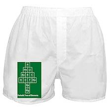 PostCard_Green_FRONT Boxer Shorts