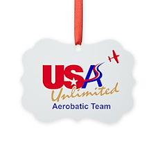 USA Team Logo Ornament
