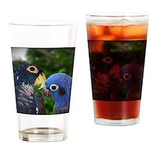 bronzebluepi Drinking Glass