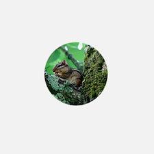 Chipmunk in Tree Mini Button