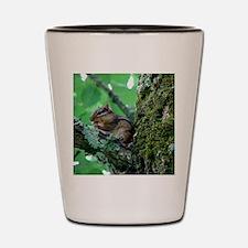 Chipmunk in Tree Shot Glass