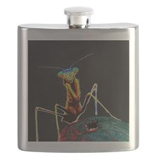 Solarized Praying Mantis Flask