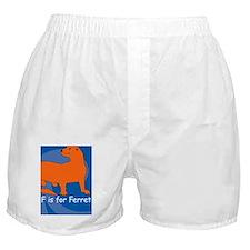 Ferret iPhone 4S Boxer Shorts
