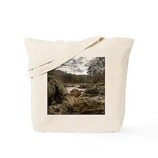 01 - Jan Tote Bag