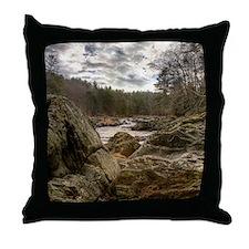 01 - Jan Throw Pillow