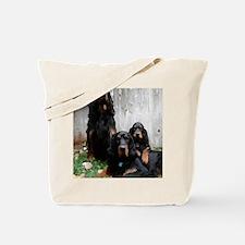 iPadCase Tote Bag