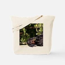 iPadHardCaseWetGordon Tote Bag