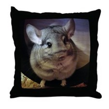 CJ on wheel - 8x8 Throw Pillow