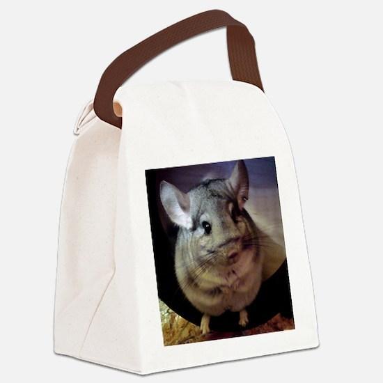 CJ on wheel - 8x8 Canvas Lunch Bag