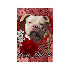 Valentine_Red_Rose_Pitbull_Jersey Rectangle Magnet