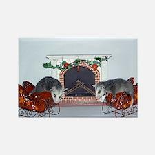 Virginia Opossum Rectangle Magnet