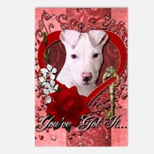 Valentine_Red_Rose_Pitbul Postcards (Package of 8)