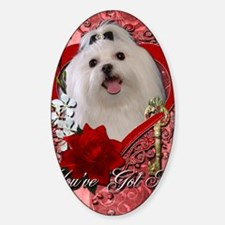 Valentine_Red_Rose_Maltese Decal