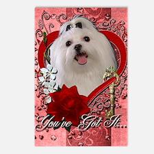 Valentine_Red_Rose_Maltes Postcards (Package of 8)