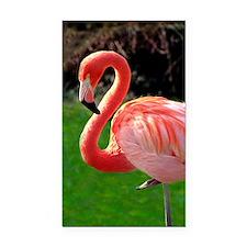(13) Flamingo Neck Rectangle Car Magnet