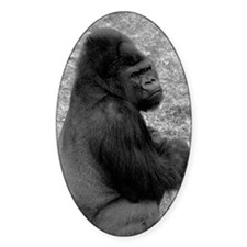 (13) Male Gorilla On Rock Decal