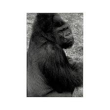 (13) Male Gorilla On Rock Rectangle Magnet